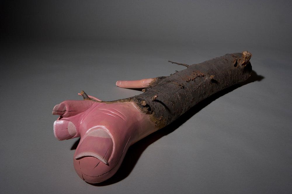 Toe Branch