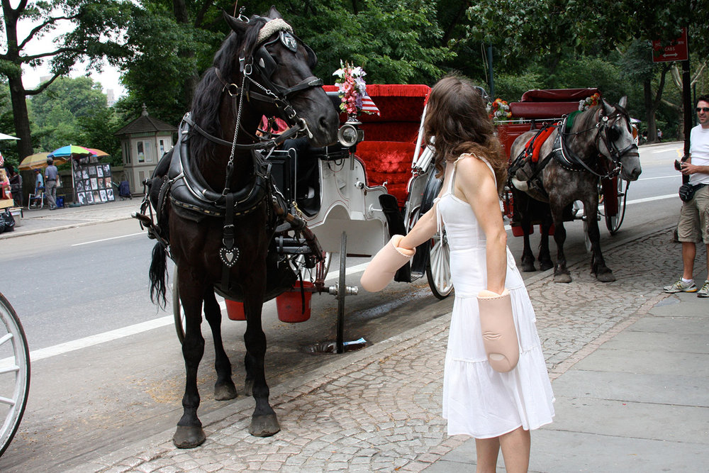 Judging the horses stepping on the sidewalk.  Photography: Ji Lee, 2008