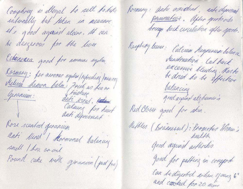 Sketchbook 25