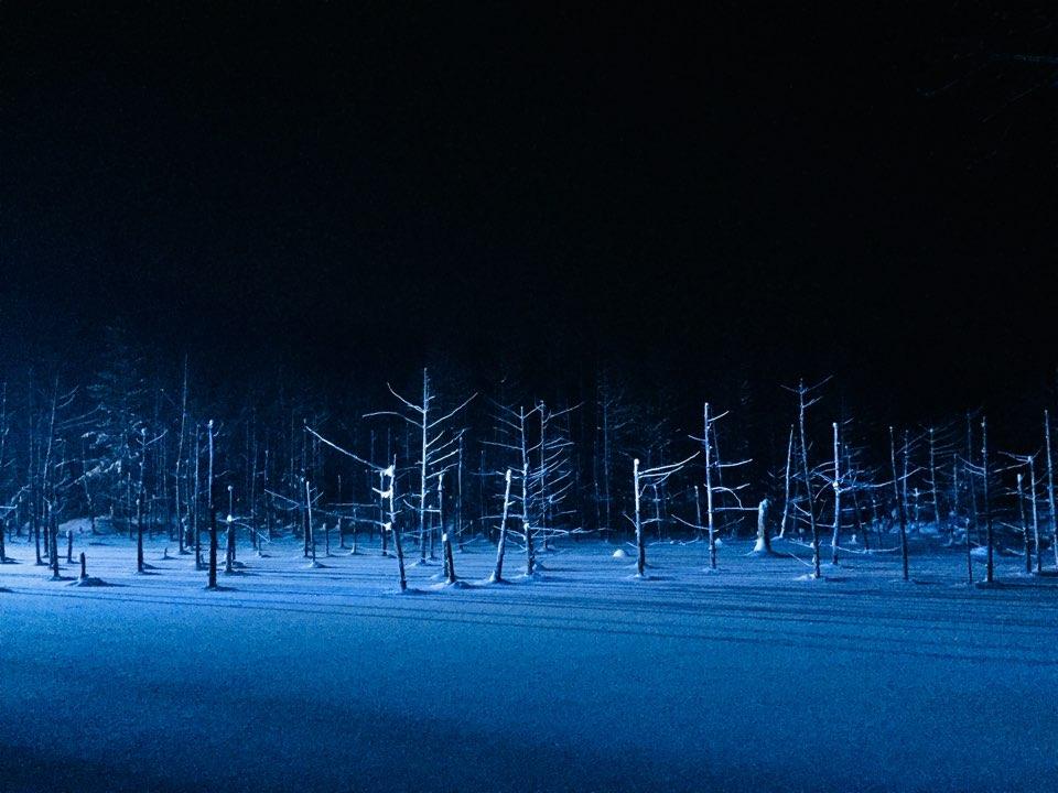 28 Loneliness in Action - Jasmine Heejae Kim.jpg