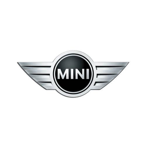 Client-Mini.jpg