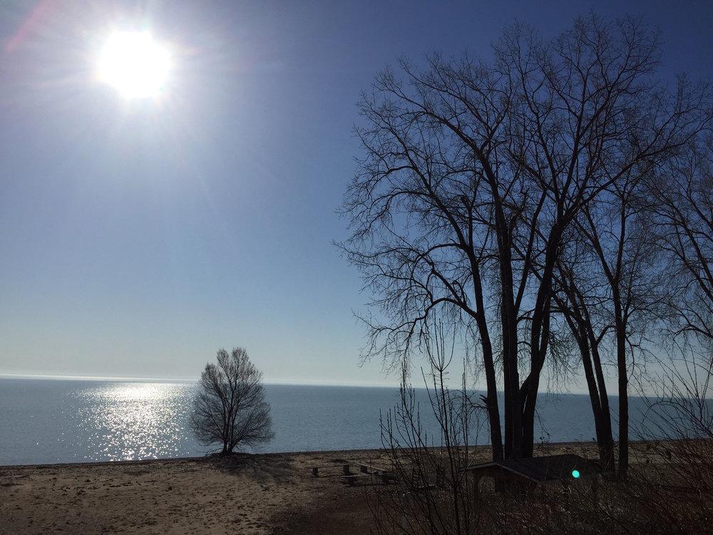 LHRC Beach.jpg
