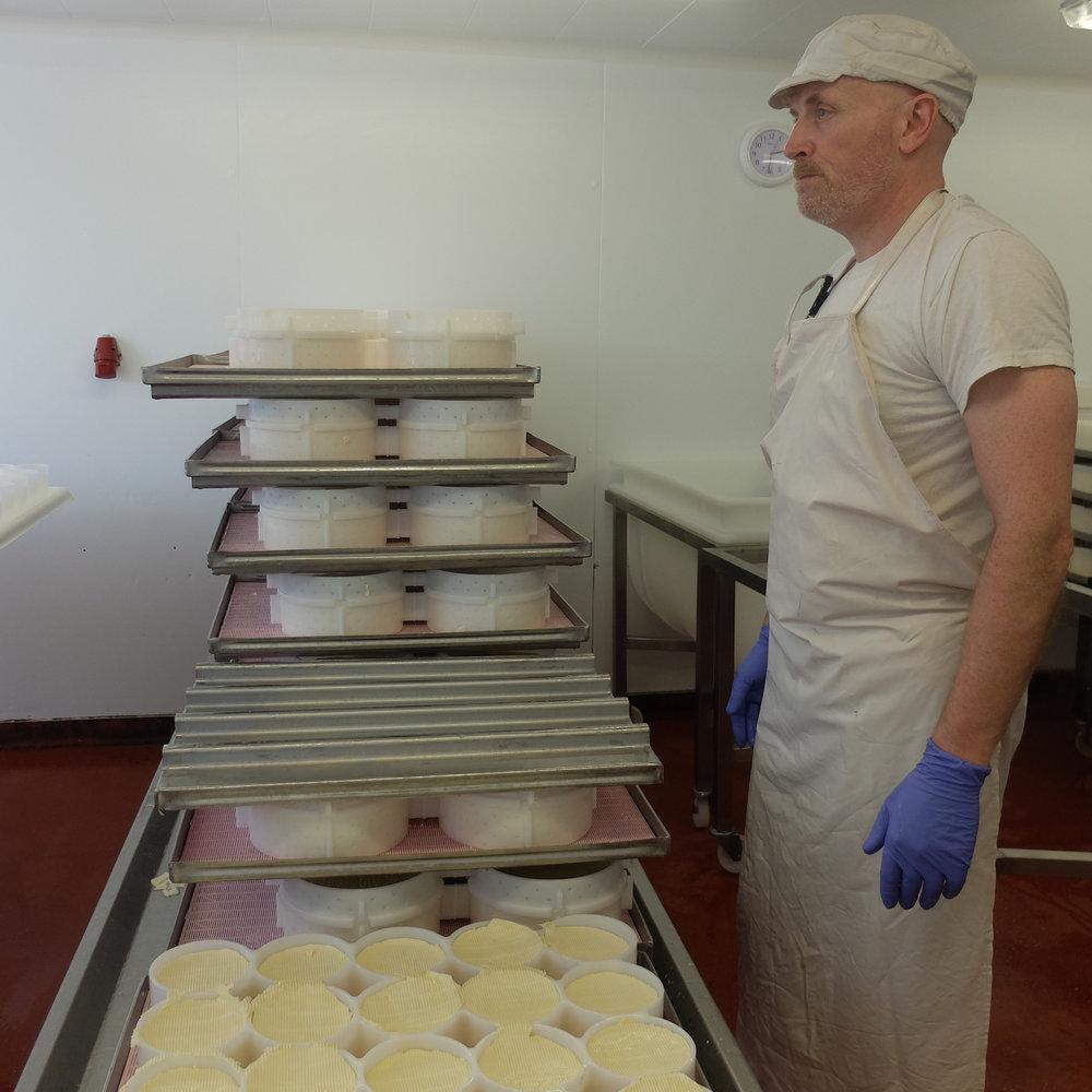 Mark Mitchell, Head Cheesemaker at Fen Farm Dairy.
