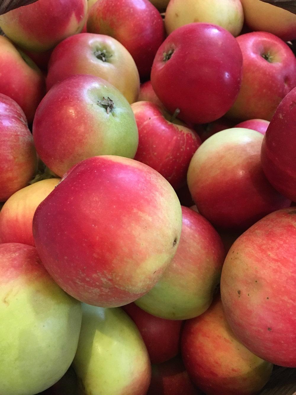 Apple Day 2017