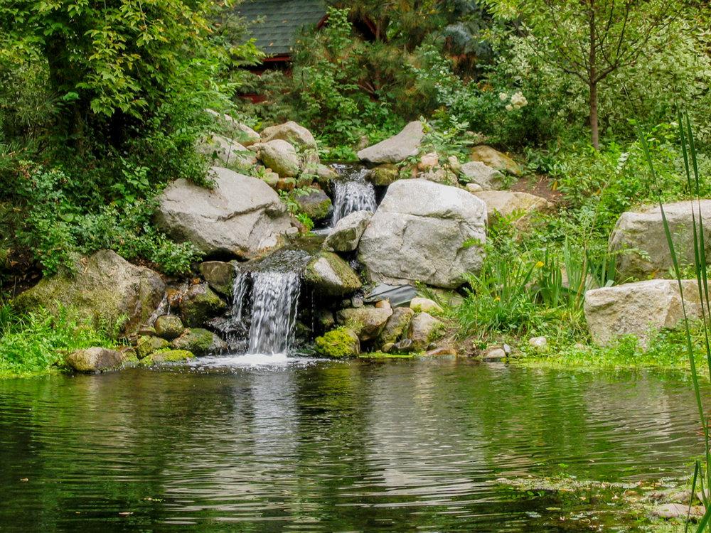 Tuck Landscape 7817.jpg