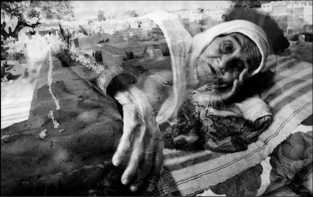 ss2000new-Gypsy_sleeping.jpg