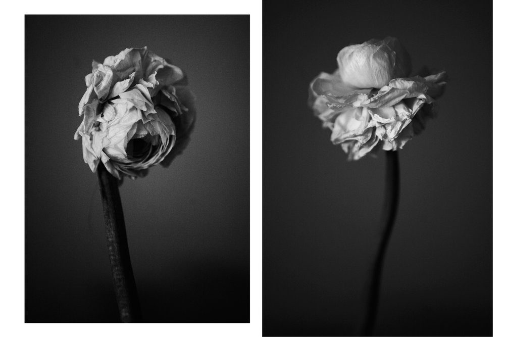 ss 2 dead flowers candle Untitled-1.jpg