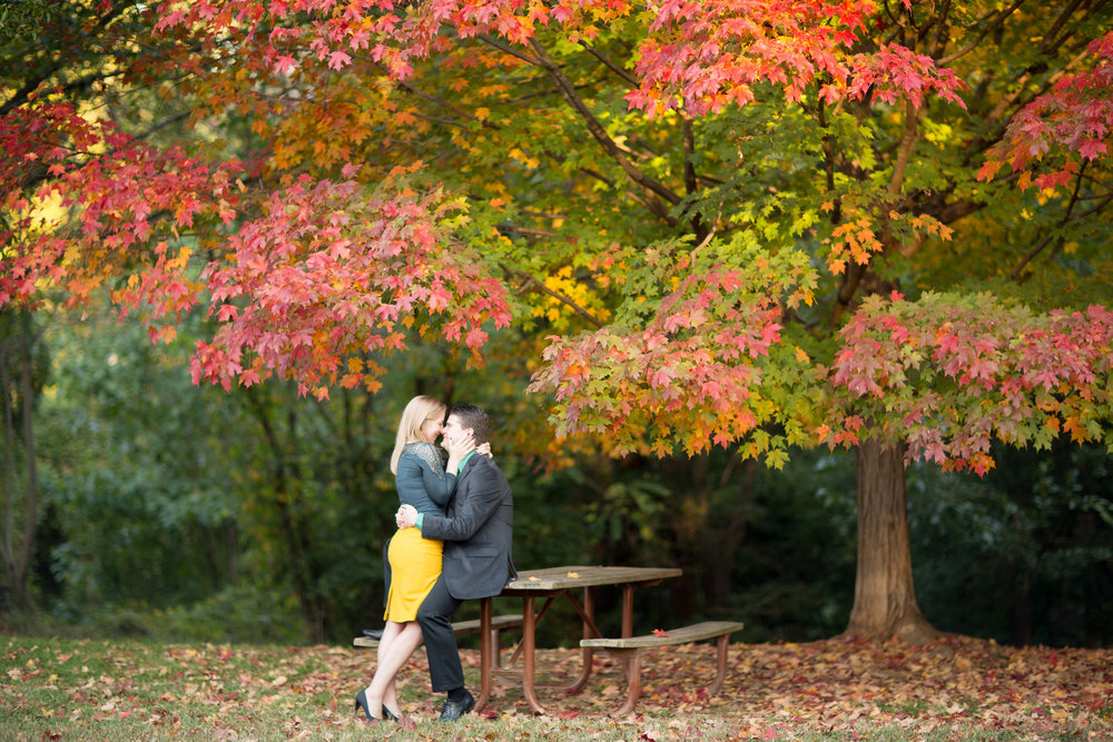 View More: http://abbygracephotography.pass.us/jonathan-lisa-engagement