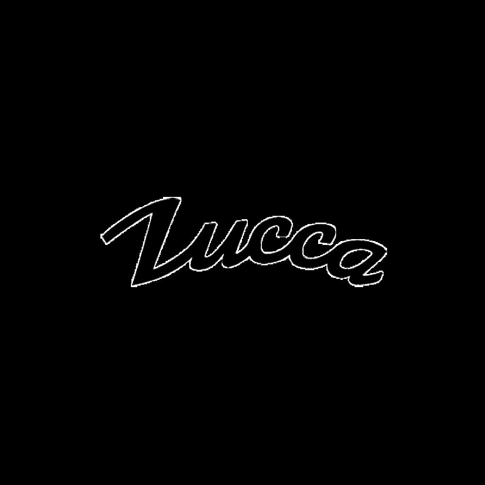 LOGO ASSETS -_zucca.png