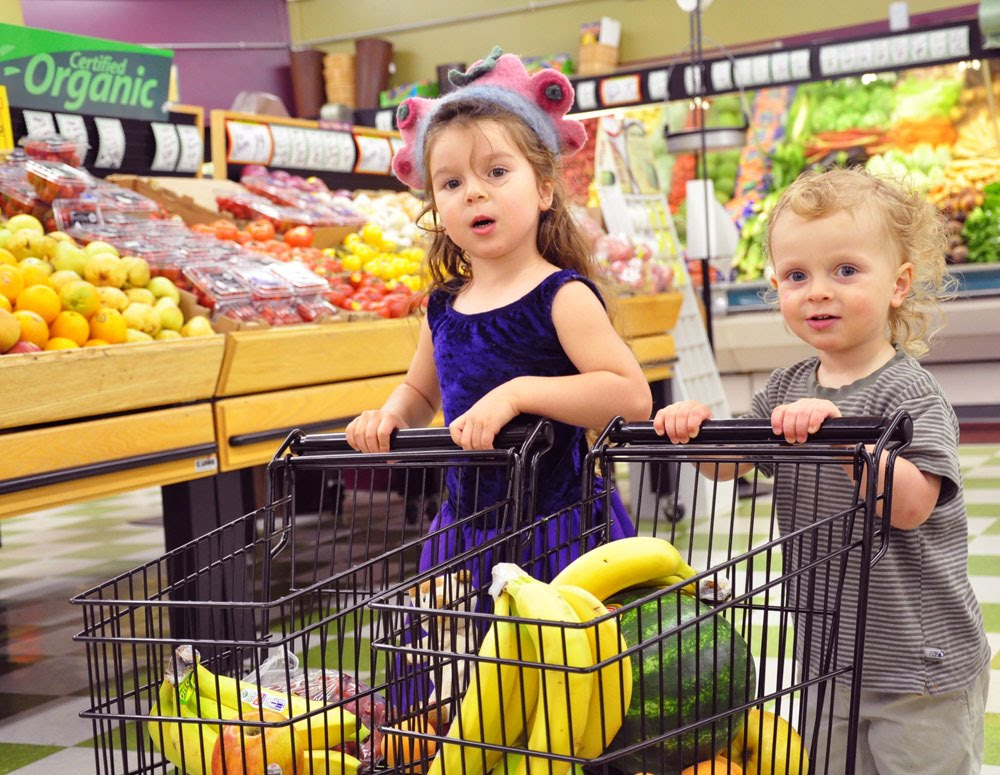Image:https://sites.google.com/site/moneyislikeraisingchildren/home/a-trip-to-the-store