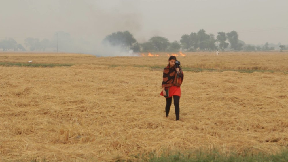 Burning the field is comonplace in October, but terrible for the environment