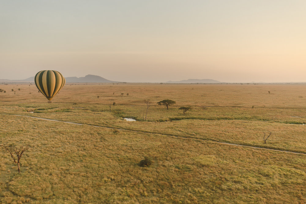 The Serengeti from atop a hot air balloon