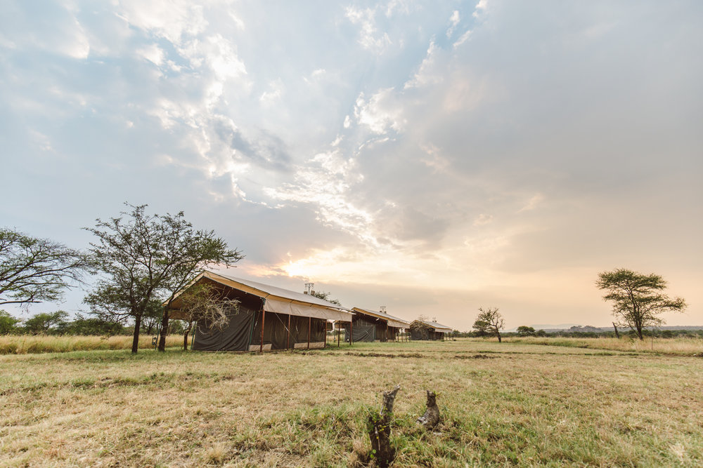 Our home in the middle of the Serengeti, surrounded by nature and wildlife