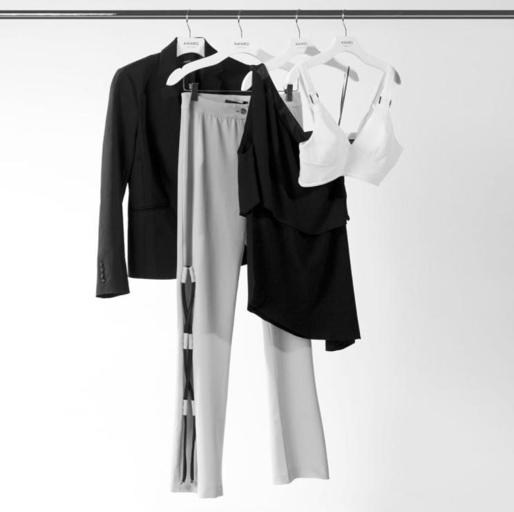 Arara com um blazer, uma calça, uma blusa e um sutiã