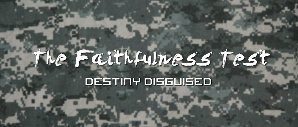 Faithfulness Test.jpg