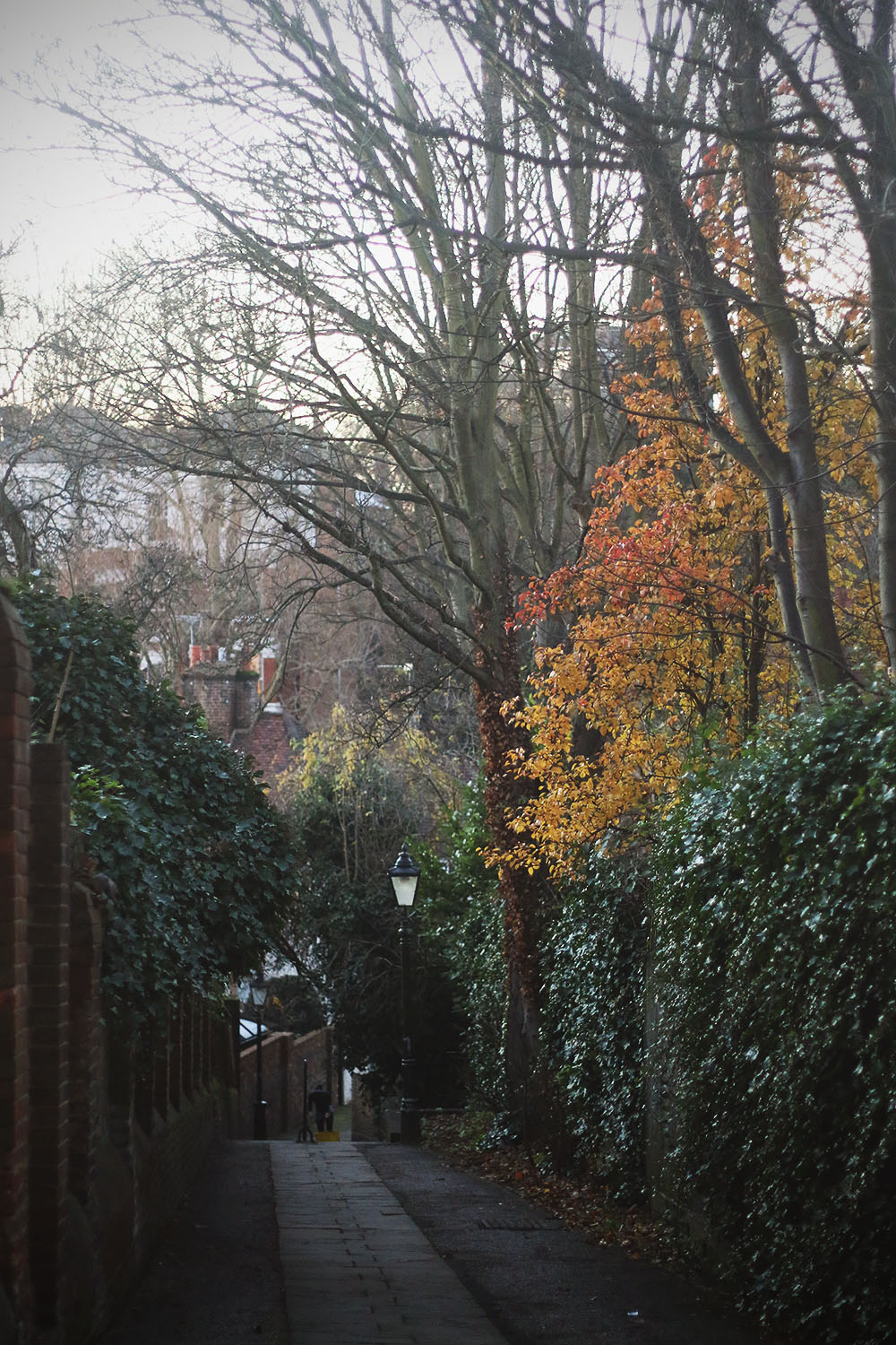 hampstead14