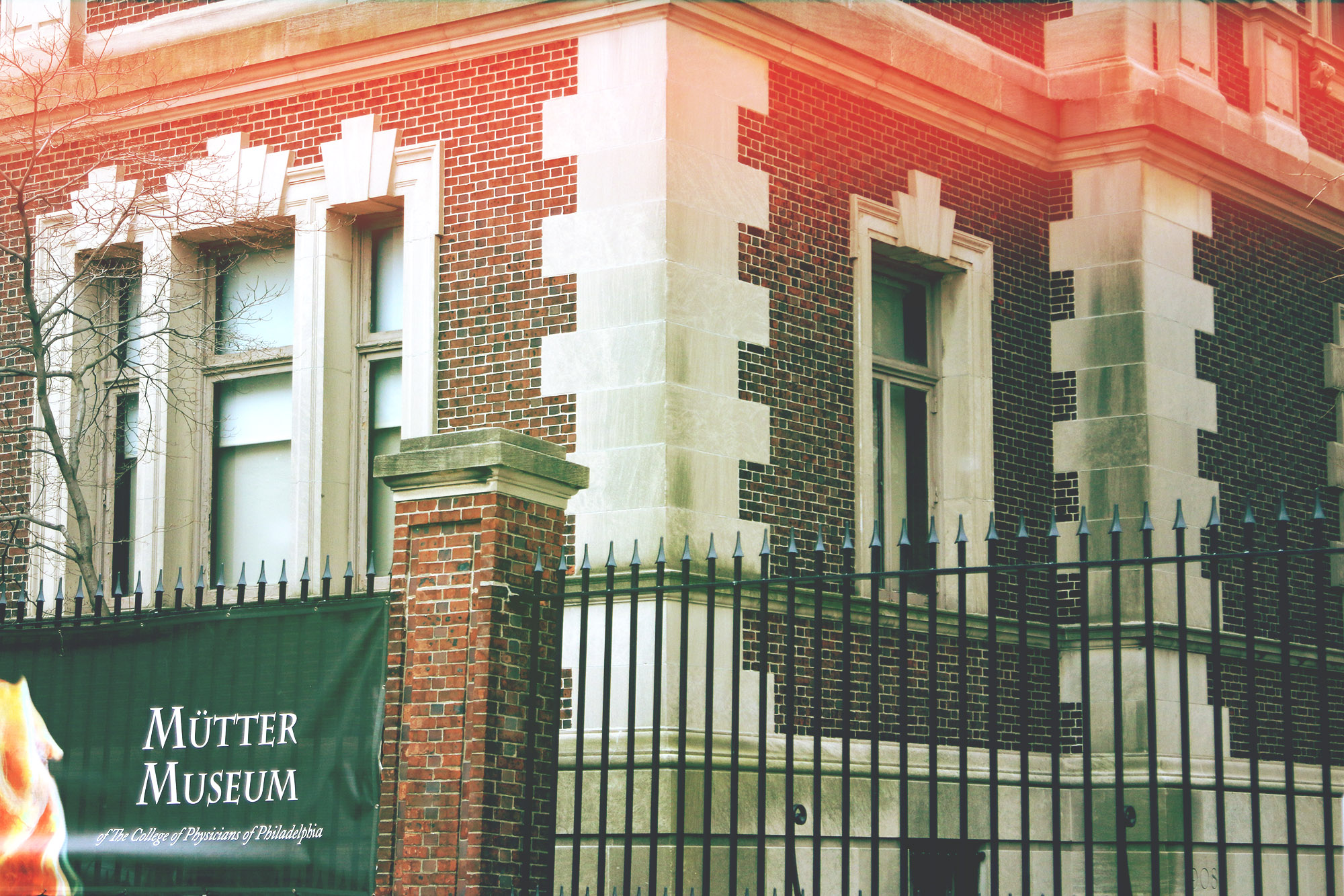 muttermuseum