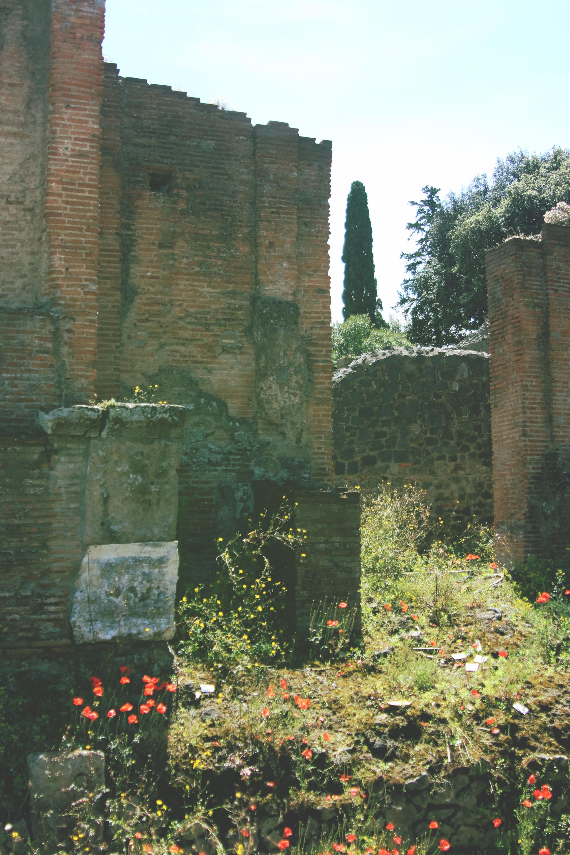 pompeii6