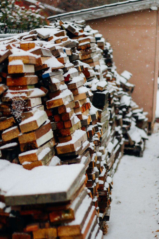 snowy-4.jpg