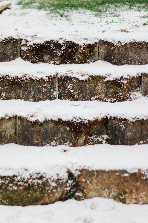 snowy-5.jpg