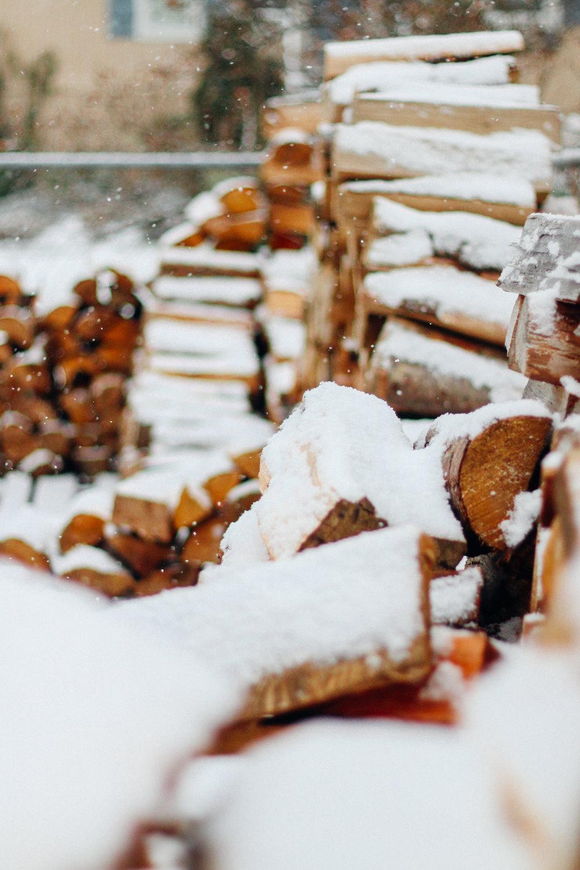 snowy-8.jpg