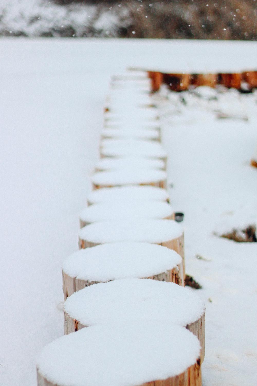 snowy-16.jpg