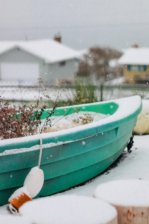 snowy-17.jpg