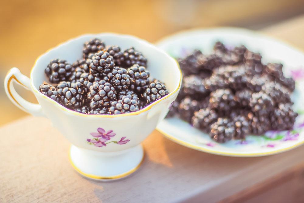 Blackberries-6.jpg