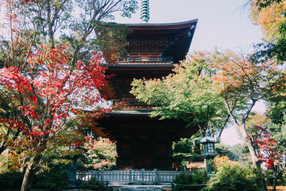 Tokyo-88.jpg