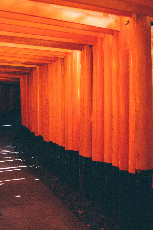 Kyoto-87.jpg