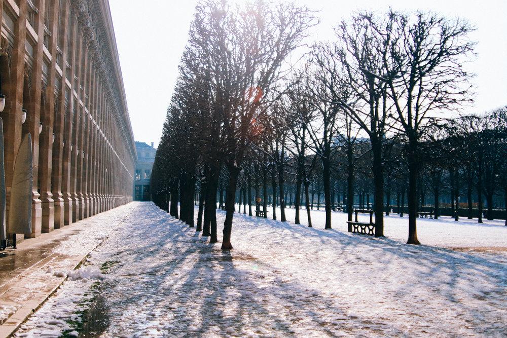 paris-52.jpg