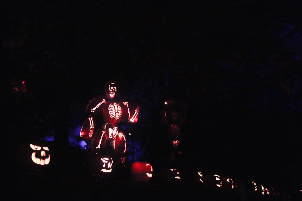 pumpkinblaze-2.jpg