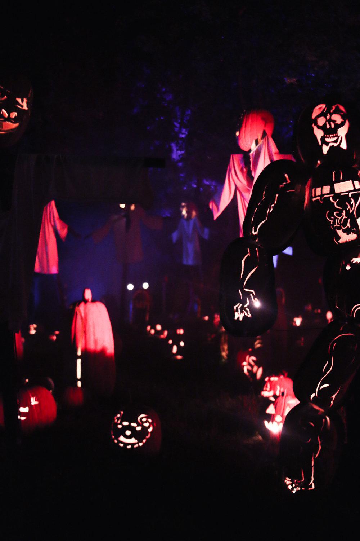 pumpkinblaze-32.jpg