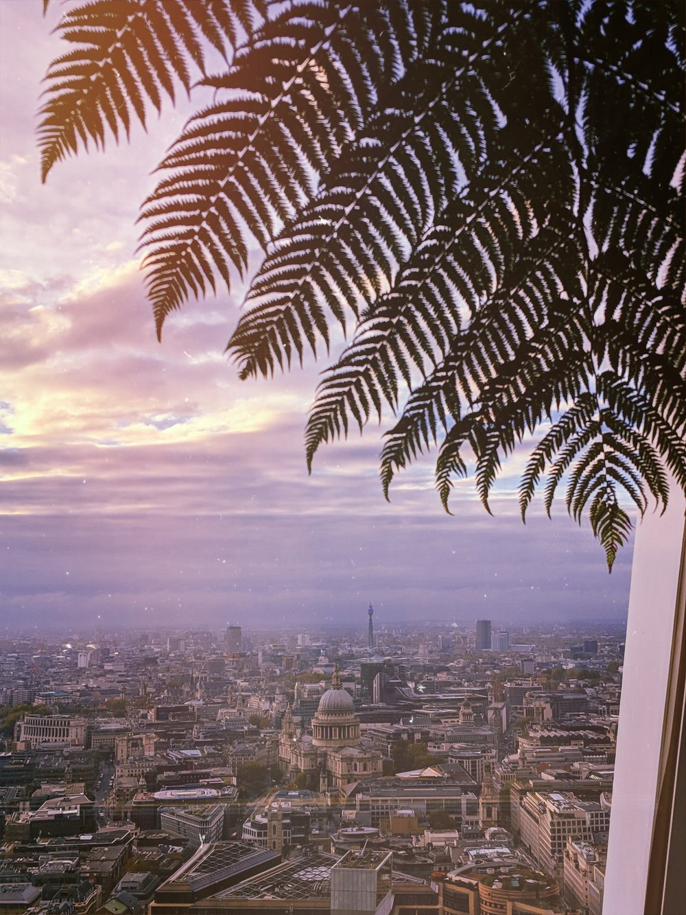 skygarden.jpg