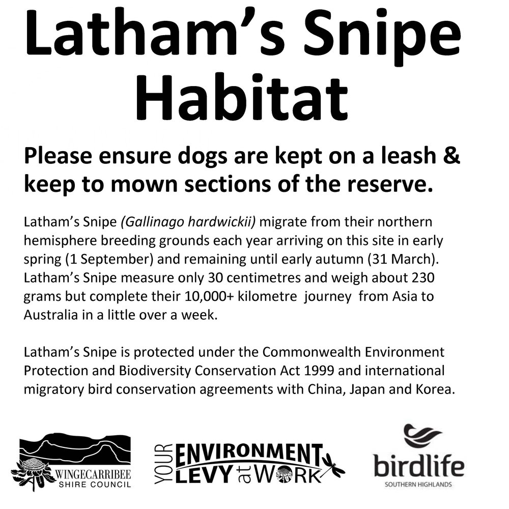 6. Latham Snipe sign 2-1.jpg