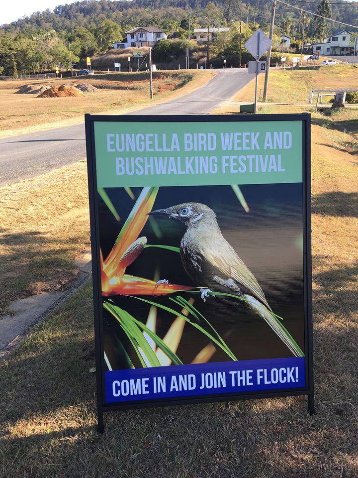 Bird Week.jpg