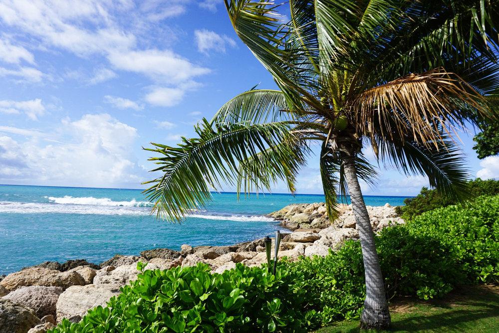 Best Hotel Oahu_Four Seasons Oahu_Addie Bell-2-2.jpg