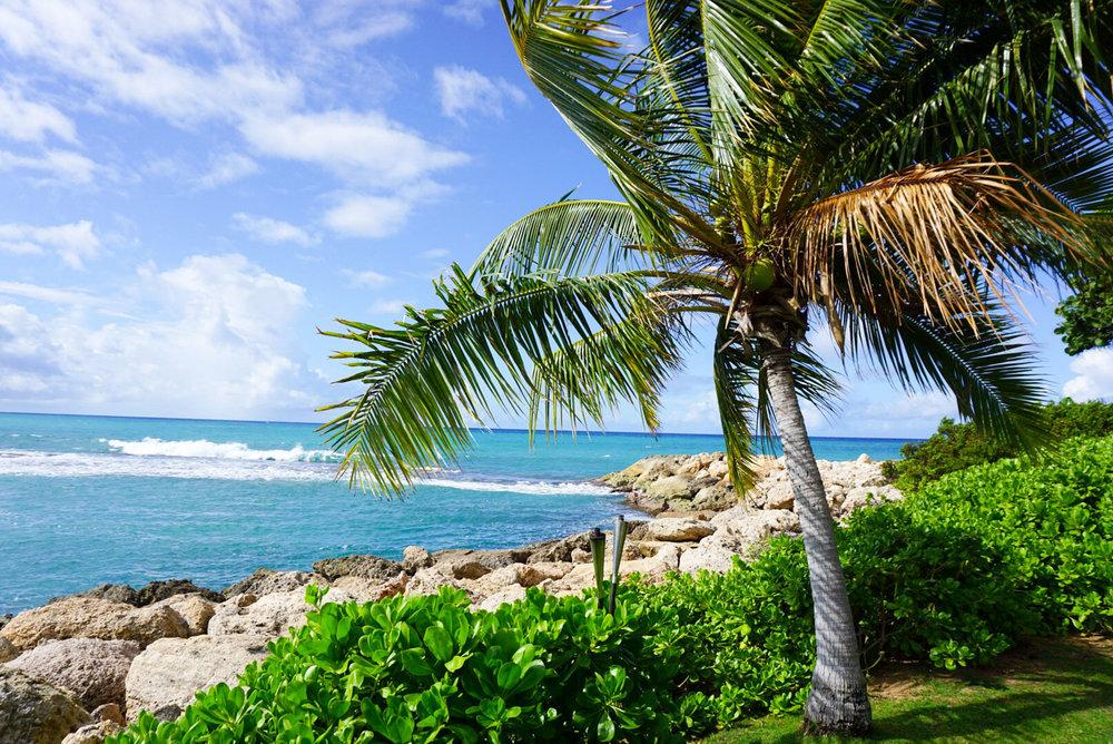 Best Hotel Oahu_Four Seasons Oahu_Addie Bell-5097.jpg