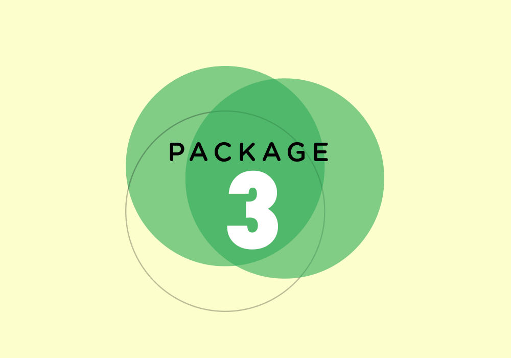 Package 3.png