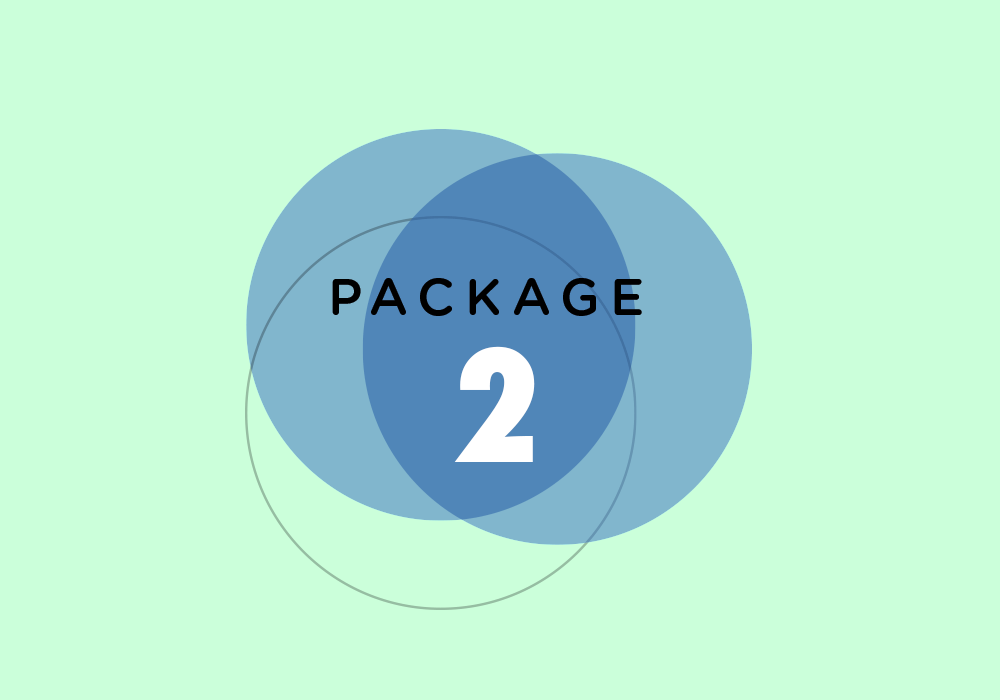 Package 2.png