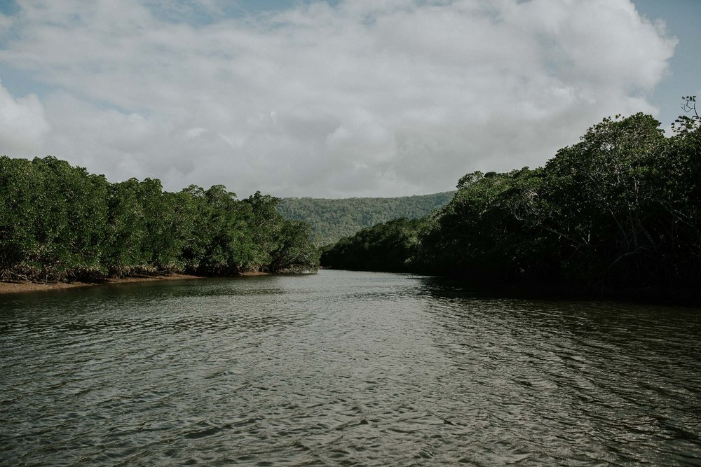 Port Douglas River