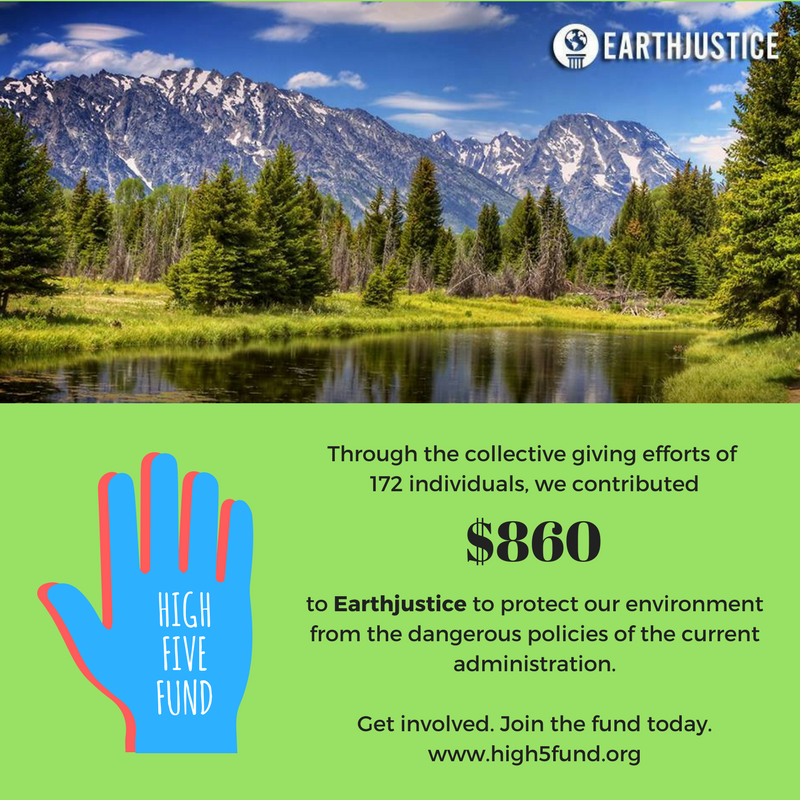 High5Fund - Earth Justice.png