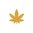 InDevelopments-cannabis-retail-stores.jpg