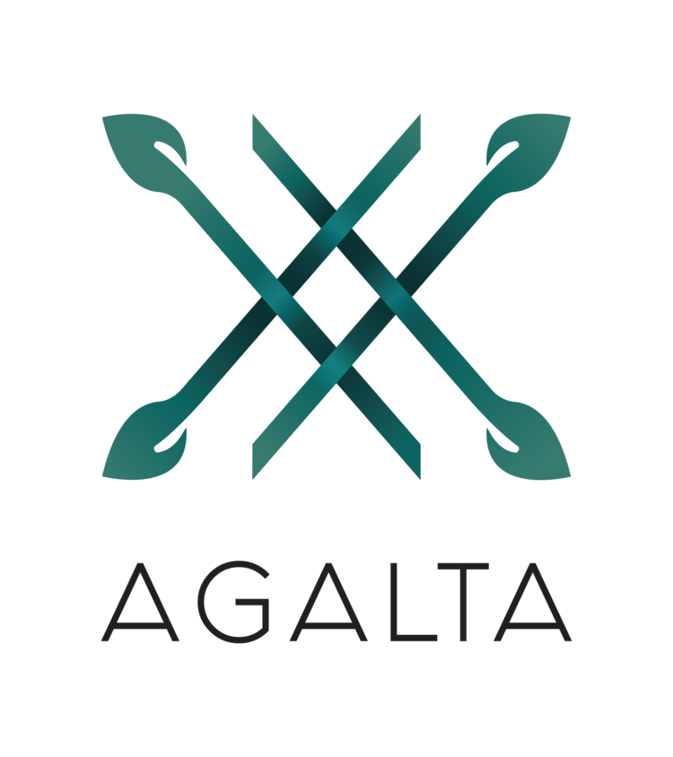 LOGO-FINAL-AGALTA-with+white.png