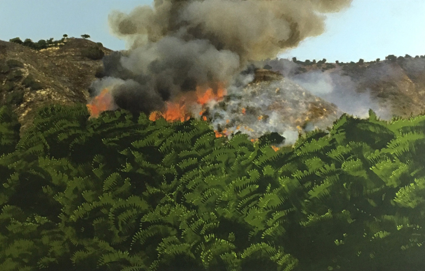 Fire in Hollywood Hills, 2016