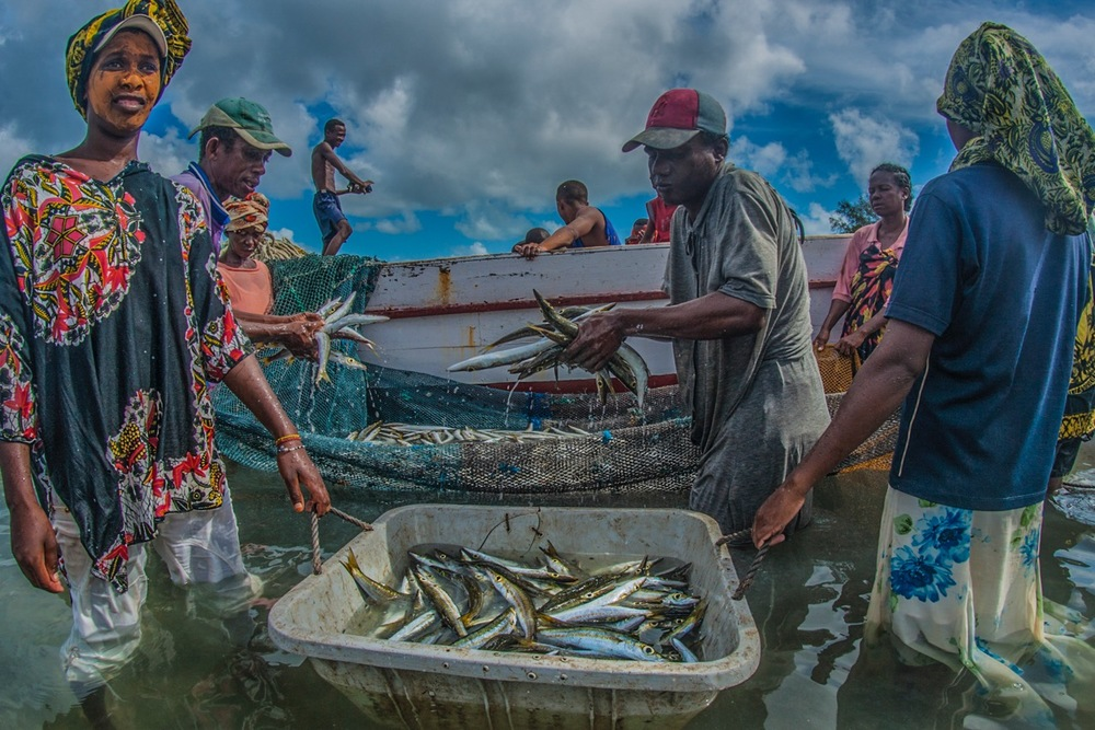 A GROUP OF FISHERMEN HAUL IN THE DAY'S CATCH IN MADAGASCAR.  PHOTO: CRISTINA MITTERMEIER.