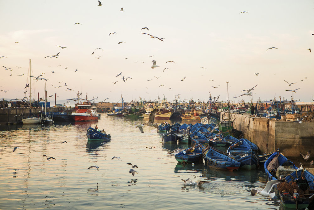 Port of Essaouira, Morocco.   PHOTO: Matt Stirn