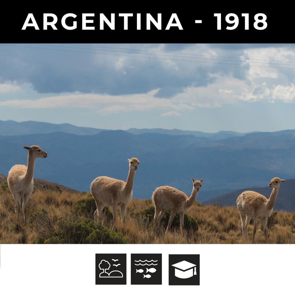 Argentina 1918.jpg