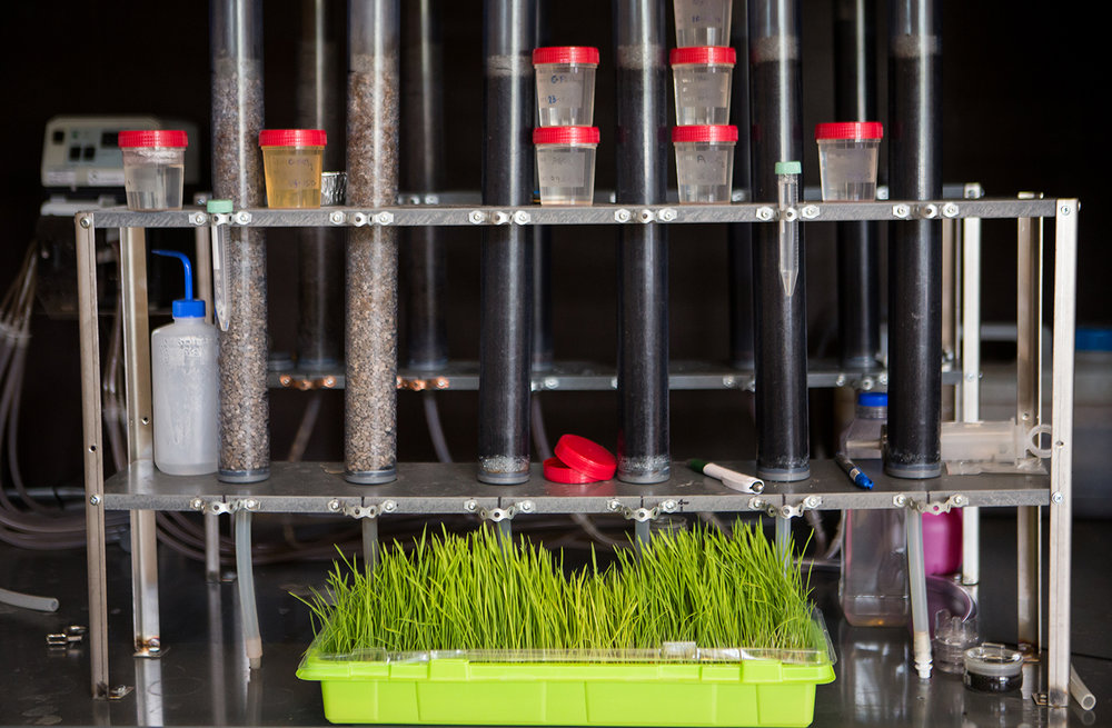 Testprosjekt: Rensing av svartvann