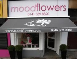 mood-flowers-2682009.jpg